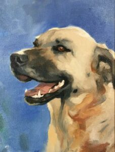 Portraits for Beginners: People and Pets @ Art in the Valley